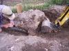 stump-removal-3.jpg