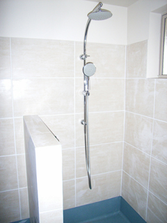 Dorf Orbit shower system in lower bathroom.